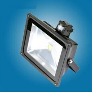 50w PIR LED Flood Light