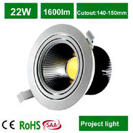 22W  COB LED Downlight