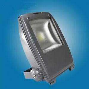 Frosted Shell LED flood light